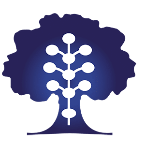 לוגו מוחין - רפואה בדרך הקבלה